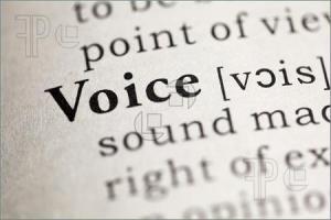 Voice-Word-2822058